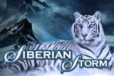 free casino slots siberian storm