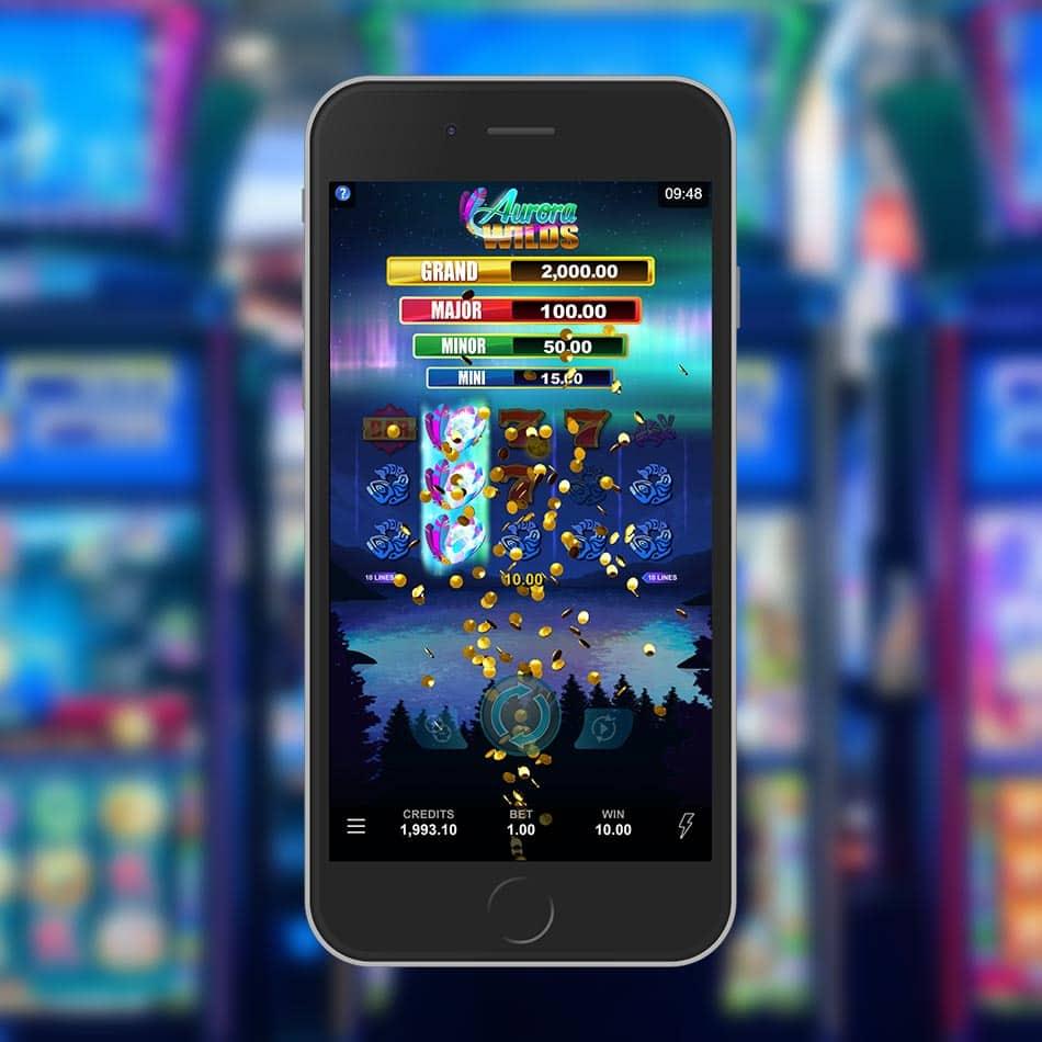 Aurora Wilds Slot Machine Big Win