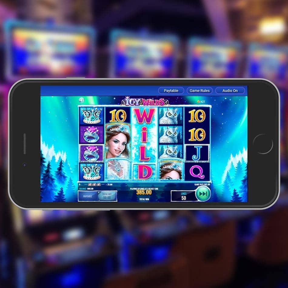 Icy Wilds Slot Machine Big Win