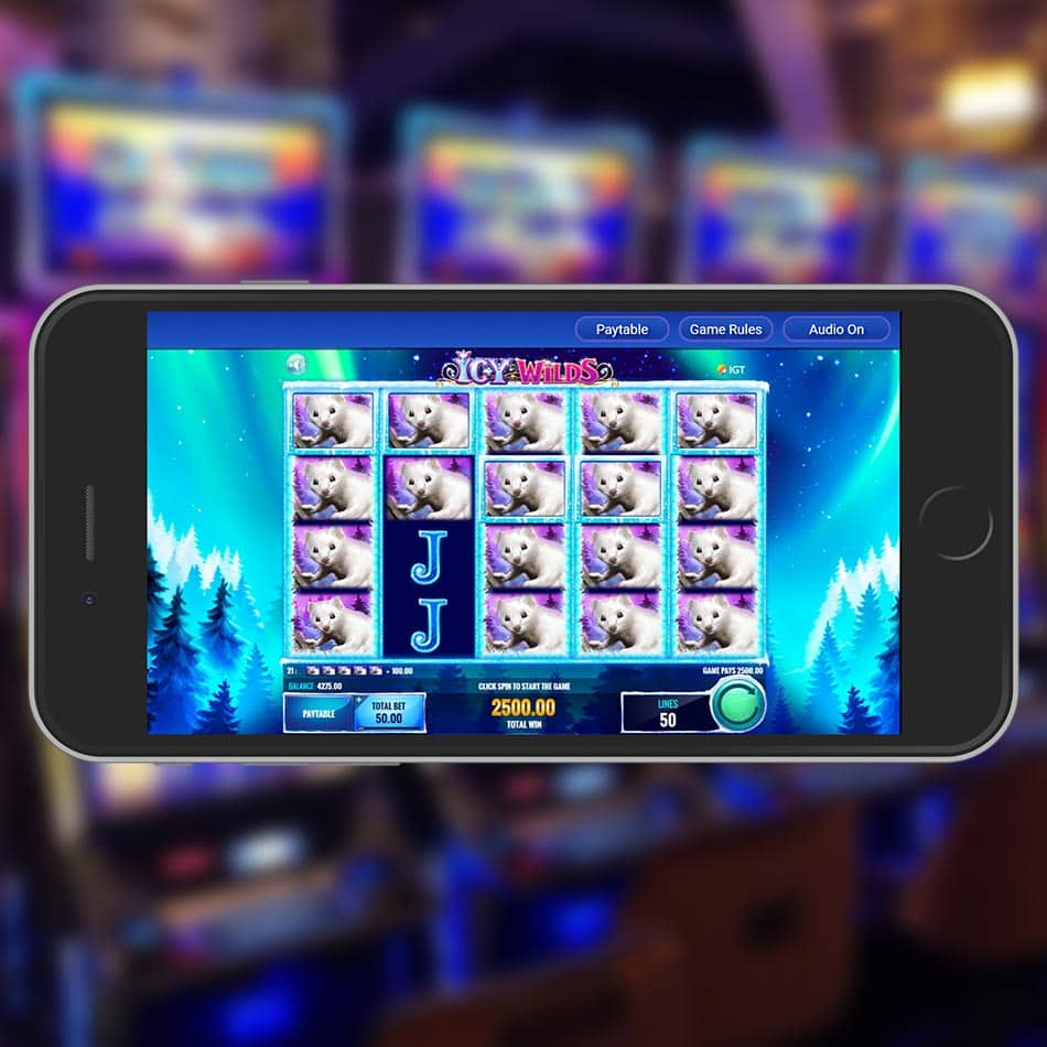 Icy Wilds Slot Machine Huge Win