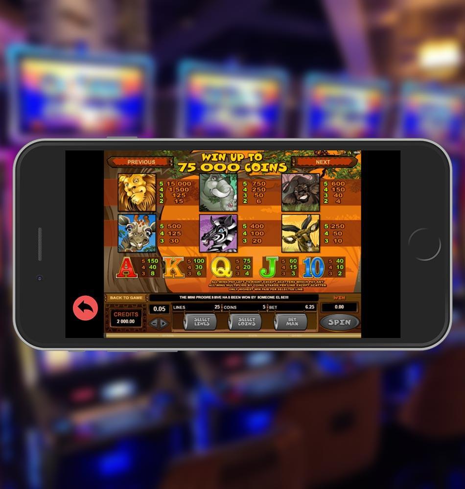 Mega Moolah Slot Machine Paytable