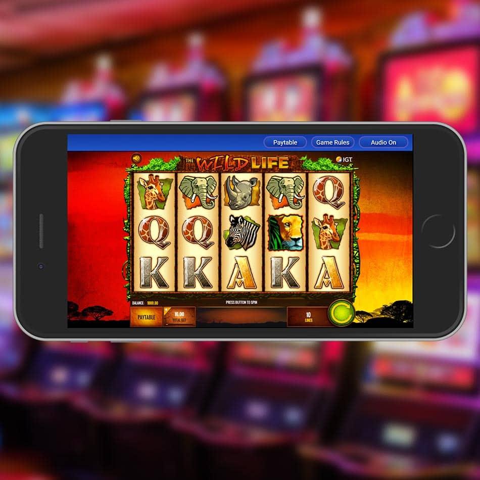 The Wild Life Slot Machine Home Page