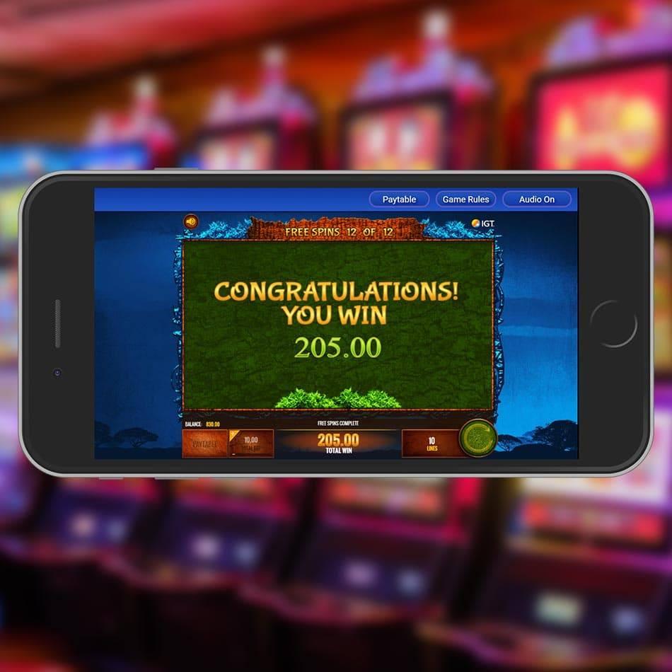 The Wild Life Slot Machine Huge Win