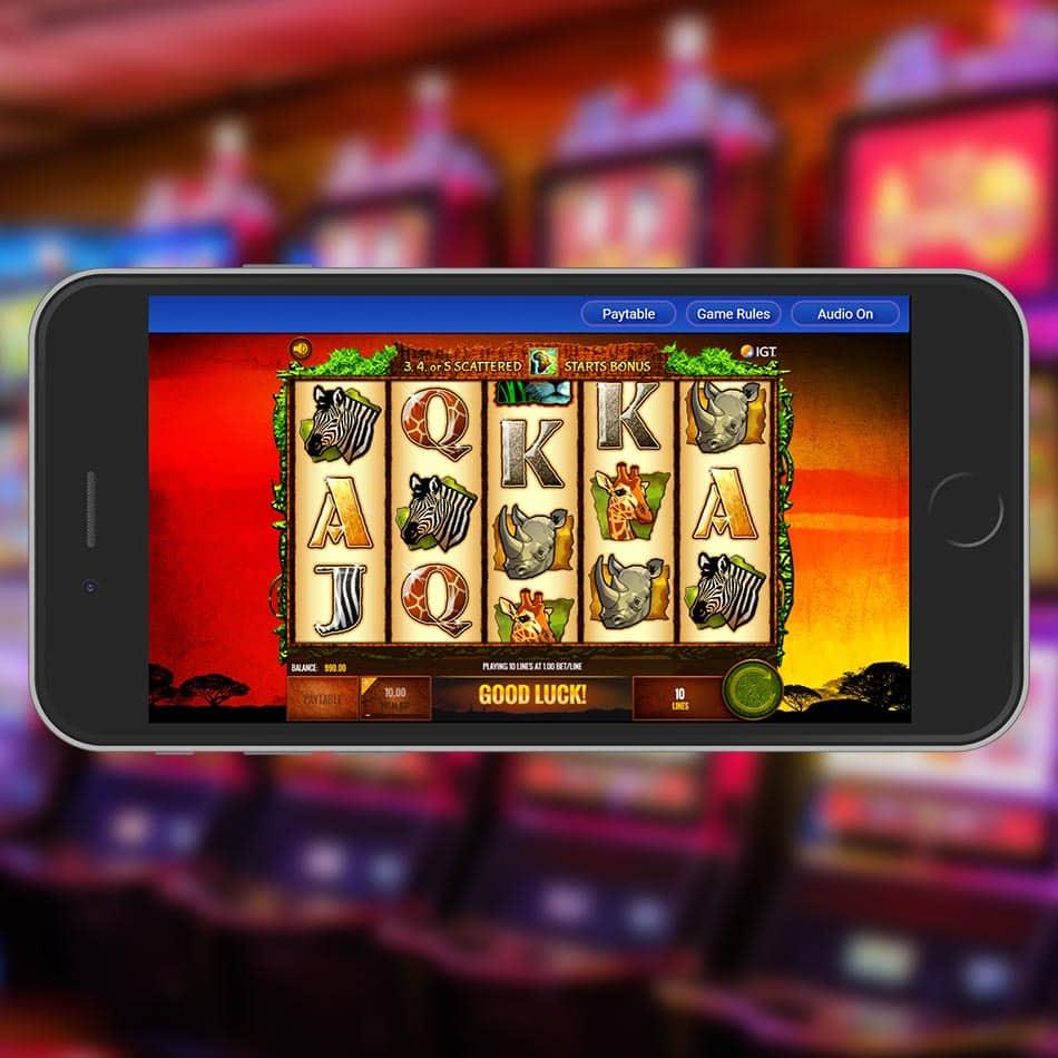 The Wild Life Slot Machine Spinning Phase